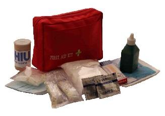 کیف امداد کوچک